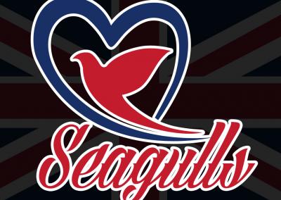تطبيق seagulls taxi شبية اوبر